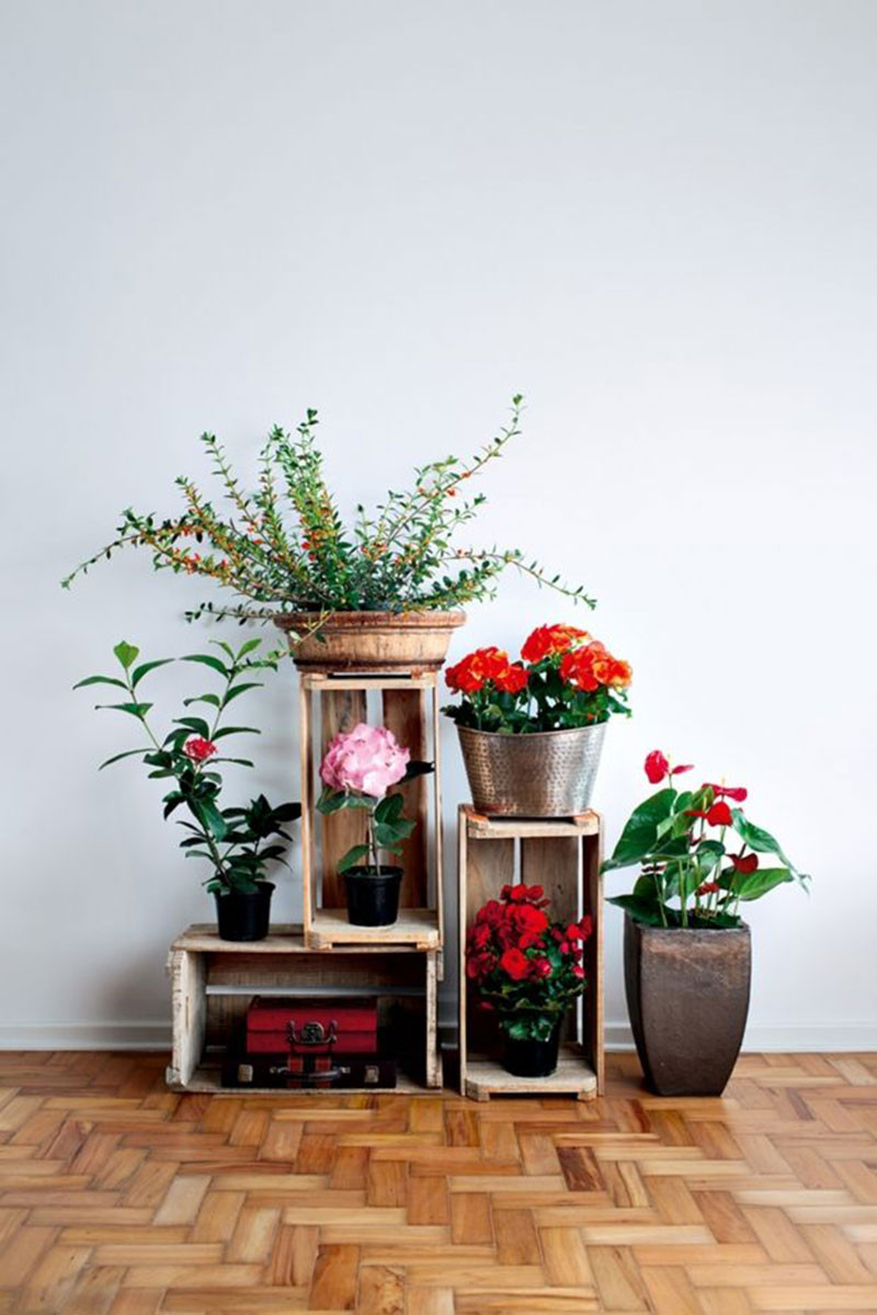 How about decorating your place with fresh flowers