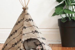 That time I created a Cat Tipi + Win one