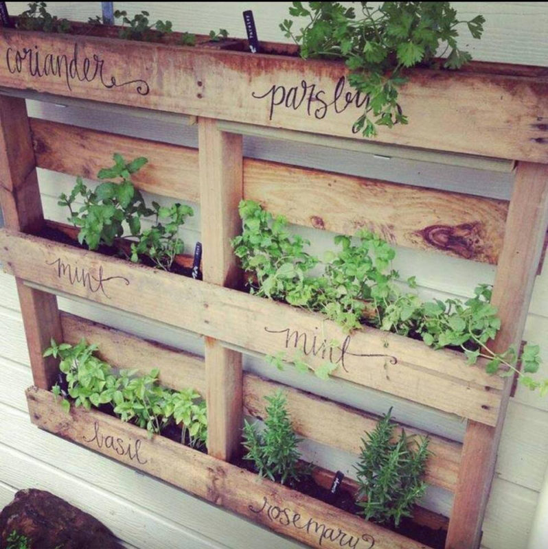 DIY herb container